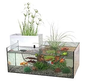 Marina kit mini bassin d 39 int rieur pour aquariophilie for Vente aquariophilie