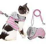 BLEVET Hunde Geschirr Katze Geschirr Komfort Gepolsterte Weste für große, mittelgroße, Mittlere & Kleine Hunde Geschirr Hund Katze Brustgeschirr MZ050 (XS, Pink)