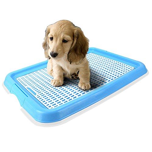 Artikelbild: candora geruchlos Welpen-WC Puppy Loo Töpfchen Hund, Puppy Trainer Starter Set Pet WC-Töpfchen Puppy Training Pad Halter Indoor Outdoor