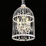 LED- Leuchten Edison Lights Modern Crystal Vogelkäfig Eisen Hänge Lampe 4 Glühbirne E14 / E12 Sockelgröße: 35 * 60 cm