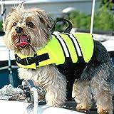 Schwimmweste Hund