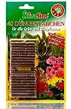 Floraline 400810barrette fertilizzanti per piante verdi e da fiore, 40pezzi (ALA32)