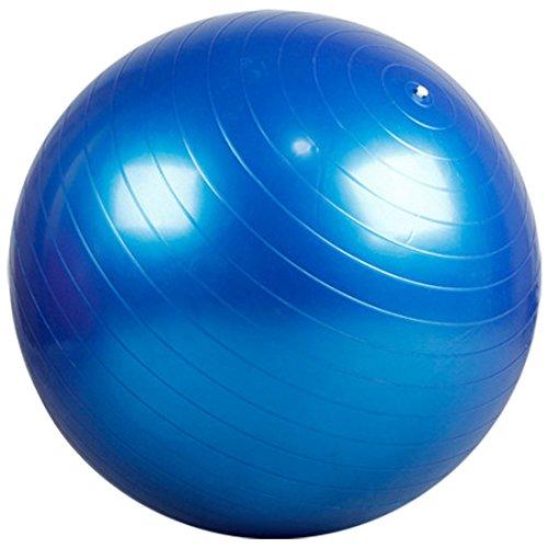 Partiss Fitness Yoga Redondo Gymnastikball Pilatesball Sitzball Roll (Blau, 65cm)