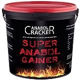 Super Anabol Gainer, Whey Protein Creatin Shake, 2400g Schoko oder Orangen Geschmack, Eiweißpulver, Taurin, Kreatin, Aminosäuren (SCHOKO GESCHMACK)
