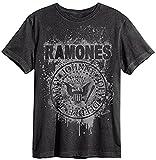 Amplified - Ramones Herren Rock Band T-Shirt - Grafitti Logo (Grau) (S-XL) (S)