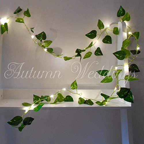ivy-fairy-lights-string-lights-2m-20-led-wedding-decorations-aa-battery-powered-warm-white-indoor-le