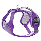 PetLoft Hundegeschirr, weicher Schwamm gepolsterter Hals/Brust umstellbarer Hundegeschirr Hundegeschirr mit Rückhandgriff - Violett, Klein