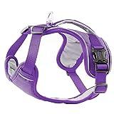PetLoft Hundegeschirr, weicher Schwamm gepolsterter Hals/Brust umstellbarer Hundegeschirr Hundegeschirr mit Rückhandgriff - Violett, Mittel