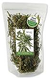 berryz CBD Hanf Buds + Große Blüten / Knospen + Hanftee aus Cannabis Sativa ( THC <0,2% ) (30 GR)