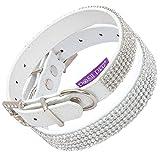 Posh Petz Hundehalsband, Strasssteine, 22-30 cm, Weiß