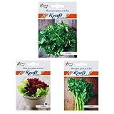 Kraft Seeds 3 in 1 All Salads Lettuce - Best Reviews Guide