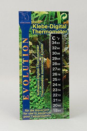 digital-thermometer-zum-aufkleben