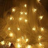 Sterne Lichterketten, LONJY LED Lichterketten, USB-Stromversorgung LED Funkelstern Lampen für Hausgarten Party Hochzeit Geburtstag Weihnachten Innendekoration Außendekoration