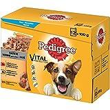 Pedigree Adult Pastete im Multipack | 4x12x100g Hundefutter nass