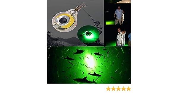 LED Unterwasserlicht K/öder Fischk/öder SAMTITY Leuchtende Angelk/öder Lichter Nacht fluoreszierend im Dunkeln leuchten