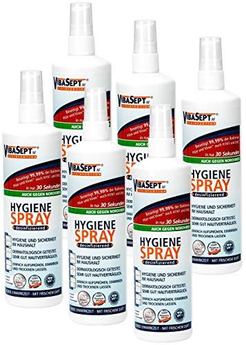 Hygiene-Spray, 6er Pack (6 x 250 ml)