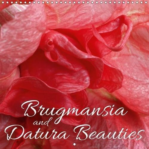 """.""""Brugmansia"""