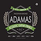 Adamas Jeu de Cordes Guitare Folk Medium 13-56 - 1919E
