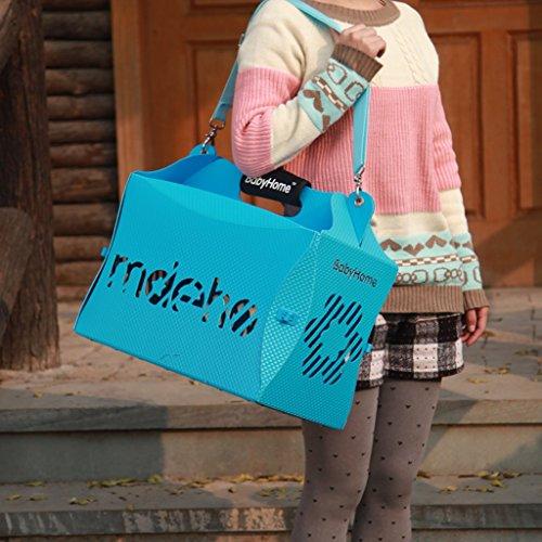 Bild: HaustierBeutelKatzeBeutelHundetaschetragender Falleinzelner SchulterHaustierRucksacktragende Tasche die KatzeBeutel trägt  farbe  Blau