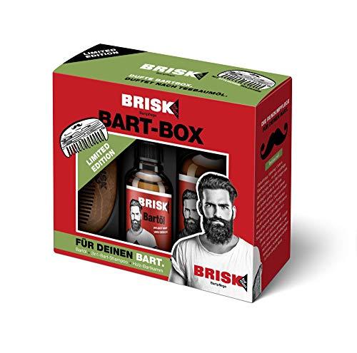 BRISK Bartpflege Geschenkset Bartöl und Shampoo, 2er Pack (2 x 180 ml)