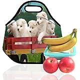 Ambielly El almuerzo Neopreno Bolsa / caja de almuerzo / almuerzo / picnic Bolsas Bolsas refrigerador aislado del organizador del recorrido, 5 Perros, 1