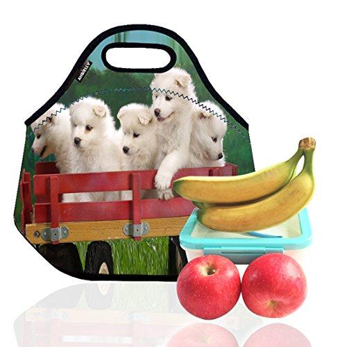 ambielly-neoprene-pranzo-al-sacco-scatola-di-pranzo-lunch-tote-picnic-borse-dispositivo-di-raffredda