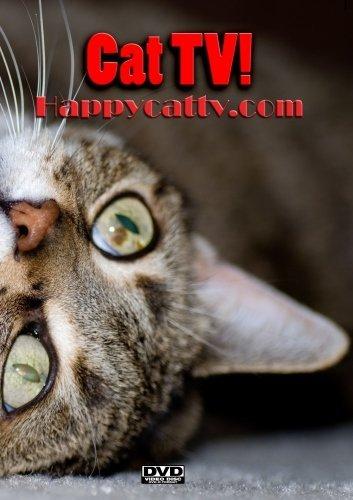 Happy Cat TV