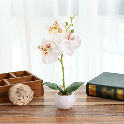 LIXIAOXIN Simulation False Topfpflanzen Schmetterling Orchideen Bonsai Dekoration Schmuck Weiß