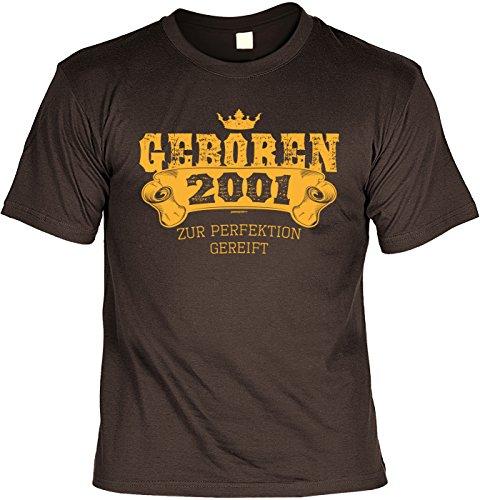 T-Shirt 17 Geburtstag - Geburtstagsshirt Sprüche Jahrgang 2001 : Geboren 2001 zur Perfektion gereift -- Geschenk-Shirt zum 17.Geburtstag Mädchen / Junge Gr: S (Mädchen Geboren T-shirt)