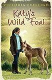 Katy's Wild Foal: Book 1 (Katy's Exmoor Ponies)