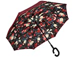#3: Delberto Umbrella