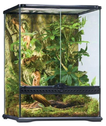 exo terra terrarium 90x45x60 Exo Terra Terraristik Starter Set Regenwald-Terrarium, mittelgroß
