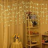 Elegear Guirnalda luces decorativas 600 LEDs 6m*3 m Iluminación de Ambiente Navidad (EU) para Bodas Festival Cortinas Pared Escaparate Bar 8 Modos de Flash(3m*6m)