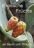 Exotische Früchte an Baum und Strauch (Wandkalender 2019 DIN A4 hoch): Tropisches Obst fotografiert wie es wächst an der Pflanze (Planer, 14 Seiten ) (CALVENDO Natur)