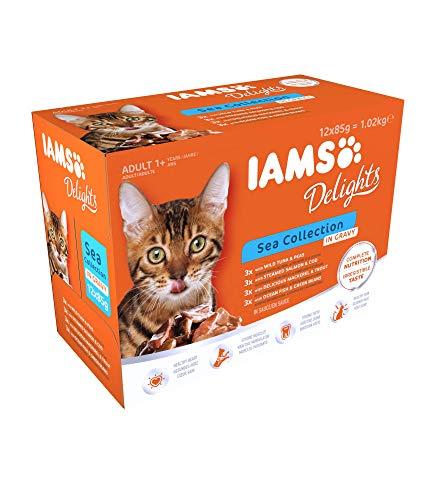 Iams Delights Sea Collection Nassfutter (für erwachsene Katzen mit verschiedenen Fisch-Sorten in Sauce, Multibox), 12 Frischebeutel (12 x 85 g)