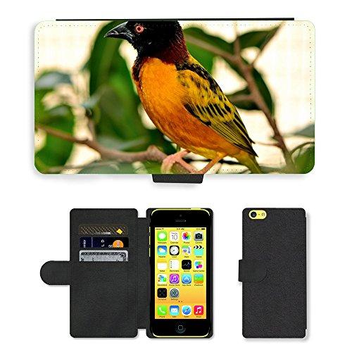 Just Mobile pour Hot Style Téléphone portable étui portefeuille en cuir PU avec fente pour carte//m00139254Village Weaver Oiseau Exotique faune//Apple iPhone 5C