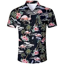 uideazone Camisa Hawaiana Hombre Casual Manga Corta Unisex 3D Impresión Verano Playa Funny Hawaii Shirt (Black Flamingos, XL)