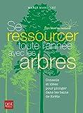 Se ressourcer toute l'année avec les arbres : Conseils et idées pour plonger dans les bains de forêt