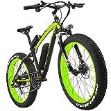 lankeleisi xf4000Snow Bike Fat Reifen Mountain Fahrrad Motor 500W 48V 7-fach Li-Akku Leistungsstark E-Bike E-Bike Mountain Bike, Schwarz / Grün