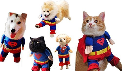 Gaorui Hunde Haustier Kleidung Hundepullover Hundebekleidung Kostüme Superman lieb brav