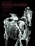 Dover Publications Dictionnaires - Best Reviews Guide