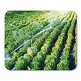 Alfombrilla de ratón Sistema de riego de la agricultura