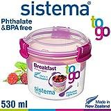 Sistema–Breakfast To Go–530ml si21355 rose bonbon