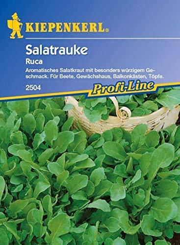 ScoutSeed Kiepenkerl - Salatrauke Ruca 2504 Aromatischer Salatkraut-Rucola