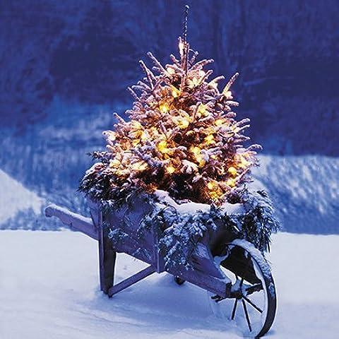 Darkroom - Set di 16 biglietti di auguri natalizi con dettagli in glitter, motivo: Christmas Tree [lingua inglese]