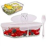 SELEWARE 2 Fächer Glas Frischhaltedosen, Mikrowellen Lebensmittel Behälter, Lunchbox mit Plastik Deckel und Löffel, BPA-frei, luftdicht, Backofen, Gefrierschrank, Spülmaschinenfest, 1,52 Liter