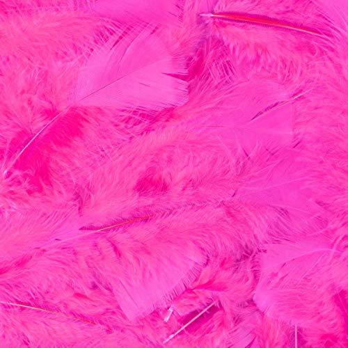 Thetru Federn 100 Stück in pink | Länge ca.15 cm | Deko-Federn für Samba-Kostüme, Ostern, Karneval und Fasching ()