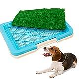 3April Hundetoilette, Rasentoilette, für Hunde