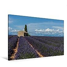 Calvendo Premium Textil-Leinwand 120 cm x 80 cm Quer, Ein Motiv aus Dem Kalender Die Farbe des Lavendels | Wandbild, Bild auf Keilrahmen, Fertigbild auf Echter Leinwand, Leinwanddruck Natur Natur