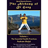 Alchemy of Qi Gong 1: Essential Health Practices